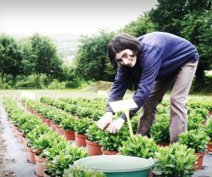 """Stéphanie, horticultrice : """"Les fleurs ont besoin d'être arrosées 7J/7"""""""