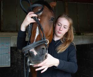 """Lucy, lycéenne et cavalière : """"L'équitation au lycée, c'est ma vie rêvée !"""""""