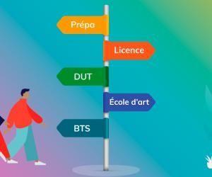 Une infographie interactive pour comprendre les études supérieures