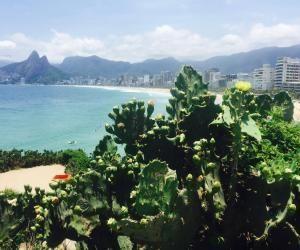 Étudier au Brésil : comment choisir sonuniversité?
