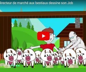2 minutes pour comprendre… le métier de directeur de marché aux bestiaux - Draw My Job