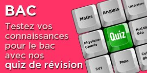 revisions-bac